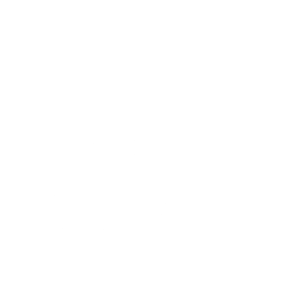google-icon.png